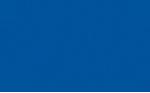 Wyland Galleries of the Florida Keys Logo