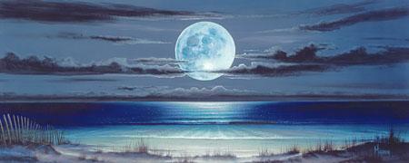 Stephen Muldoon Moon Dunes - Wyland Gallery Sarasota
