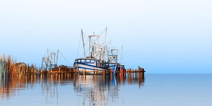 Steve Harlan Stanley's Fish Camp